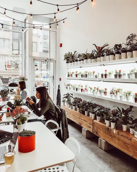 Cover of 12 vegan cafes to discover in Montreal 🍃