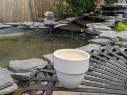 Boire un si bon café, dans un décor aussi paradisiaque, à l'intérieur d'une si jolie serre, ça n'a pas d'égal.