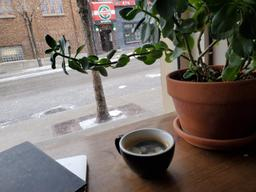 The winter won't  go away😖 Another coffee+work combo at this little organic joint. Nice citrusy but not astringent Americano